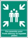 Fire assembly point (English Polish) Sign