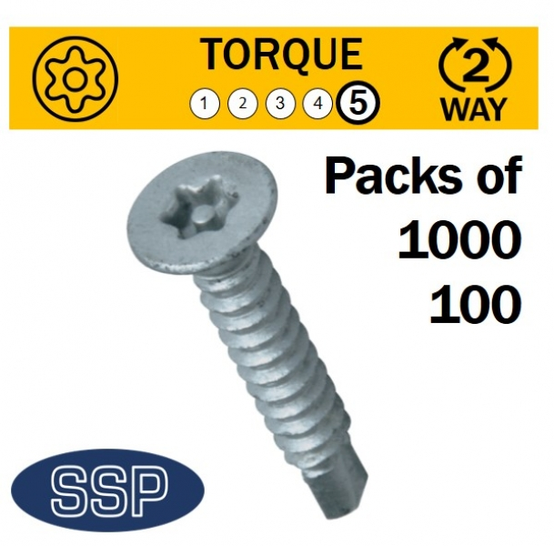 Self Drilling security screws