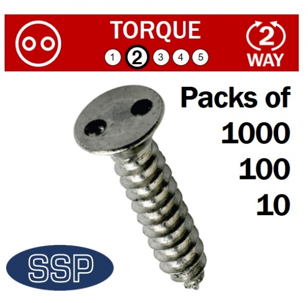 Pig Nose Countersunk Self Tapping Tamper-Proof Fasteners