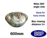 Complete-Vision 360 Degree Panoramic Observation Mirror (600mm)