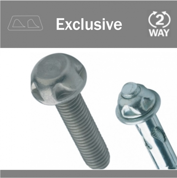 Specialist Two-Way Screws